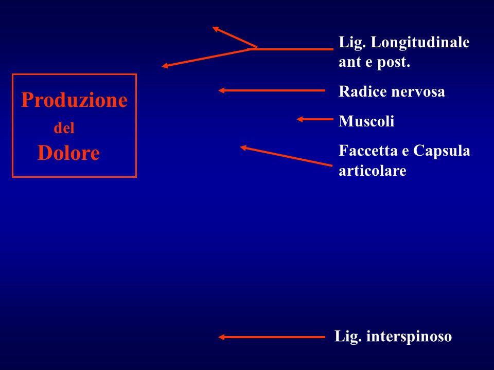 Lig. Longitudinale ant e post. Radice nervosa Muscoli Faccetta e Capsula articolare Lig. interspinoso Produzione del Dolore