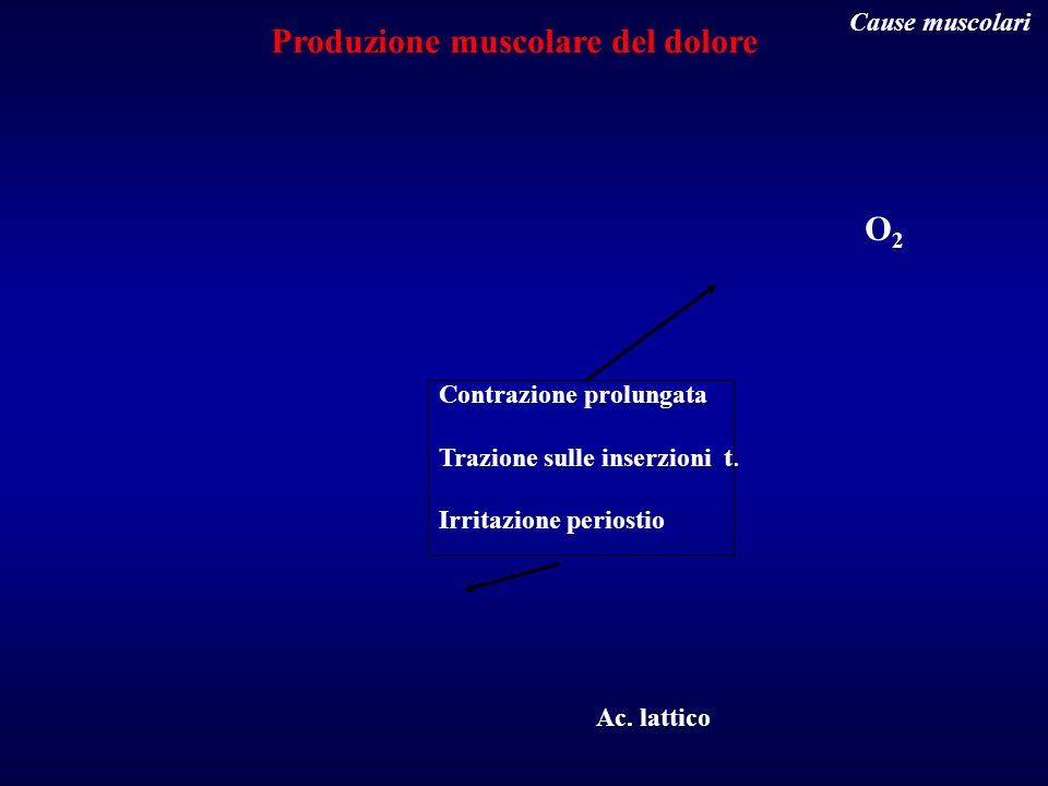 O2O2 Ac. lattico Contrazione prolungata Trazione sulle inserzioni t. Irritazione periostio Produzione muscolare del dolore Cause muscolari