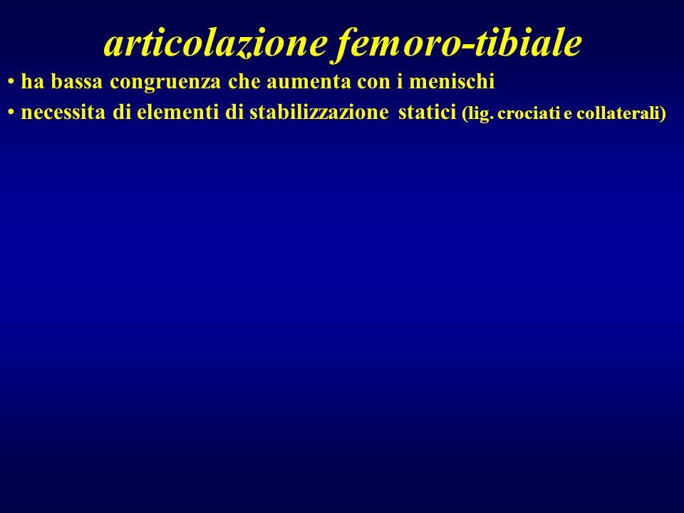 articolazione femoro-tibiale ha bassa congruenza che aumenta con i menischi necessita di elementi di stabilizzazione statici (lig. crociati e collater