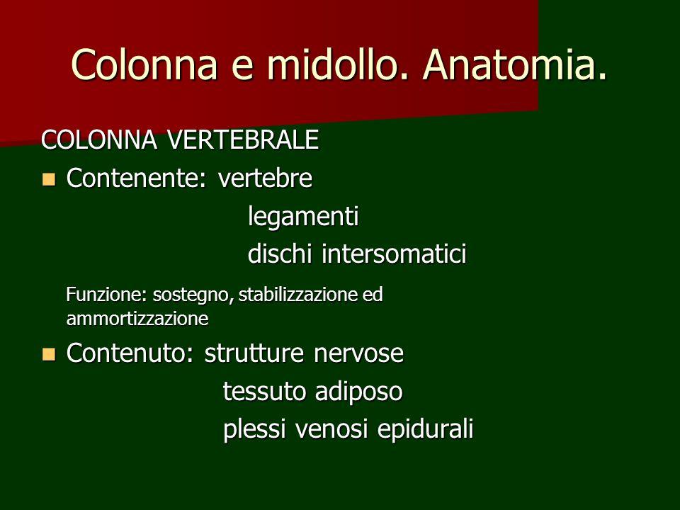 Colonna e midollo. Anatomia. COLONNA VERTEBRALE Contenente: vertebre Contenente: vertebre legamenti legamenti dischi intersomatici dischi intersomatic