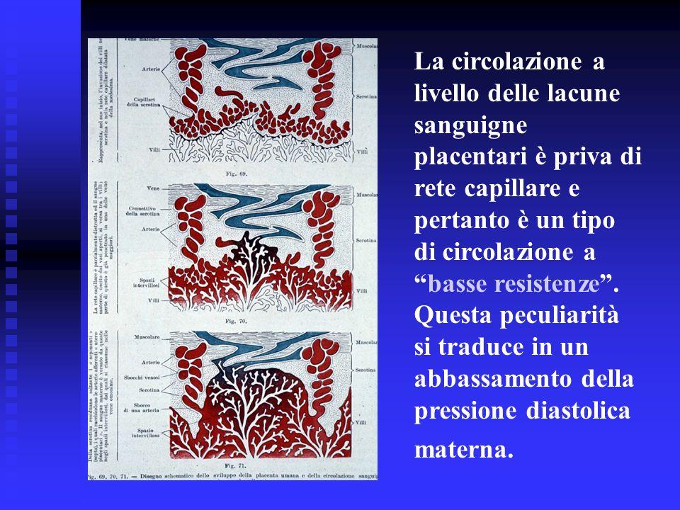 La circolazione a livello delle lacune sanguigne placentari è priva di rete capillare e pertanto è un tipo di circolazione abasse resistenze. Questa p