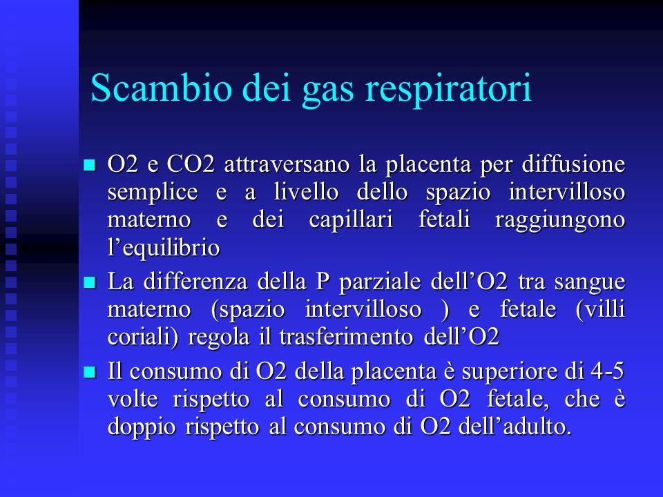 Scambio dei gas respiratori O2 e CO2 attraversano la placenta per diffusione semplice e a livello dello spazio intervilloso materno e dei capillari fe