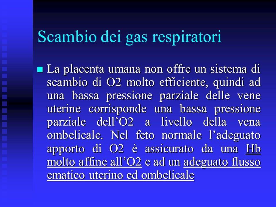Scambio dei gas respiratori La placenta umana non offre un sistema di scambio di O2 molto efficiente, quindi ad una bassa pressione parziale delle ven