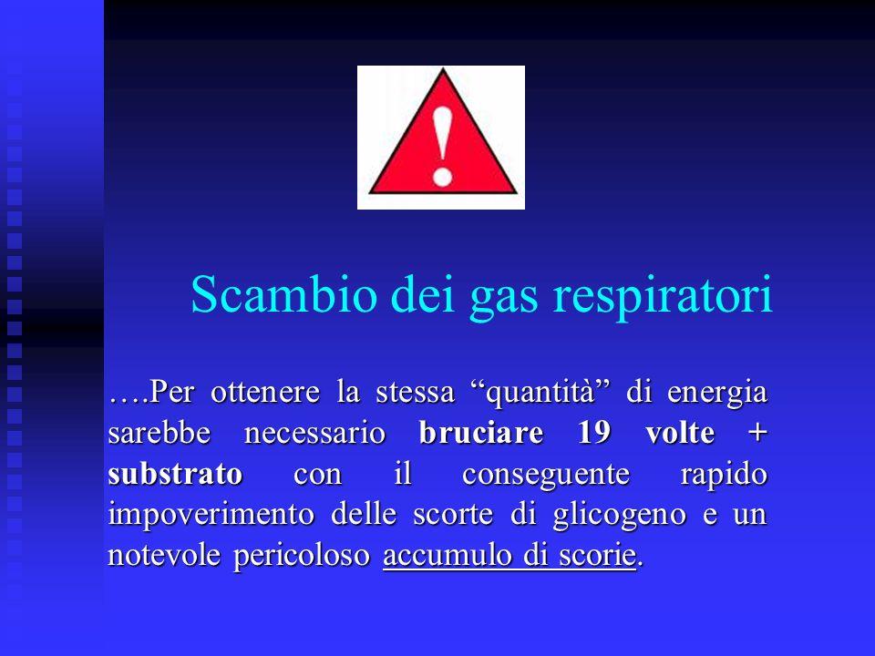 ….Per ottenere la stessa quantità di energia sarebbe necessario bruciare 19 volte + substrato con il conseguente rapido impoverimento delle scorte di