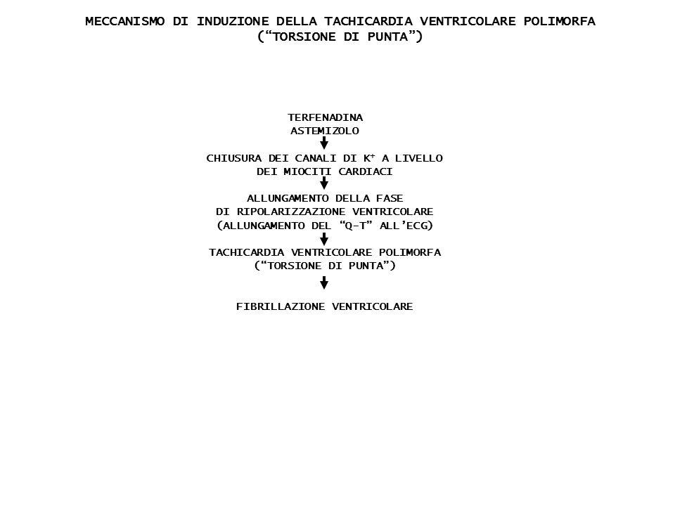 TERFENADINA ASTEMIZOLO CHIUSURA DEI CANALI DI K + A LIVELLO DEI MIOCITI CARDIACI ALLUNGAMENTO DELLA FASE DI RIPOLARIZZAZIONE VENTRICOLARE (ALLUNGAMENT