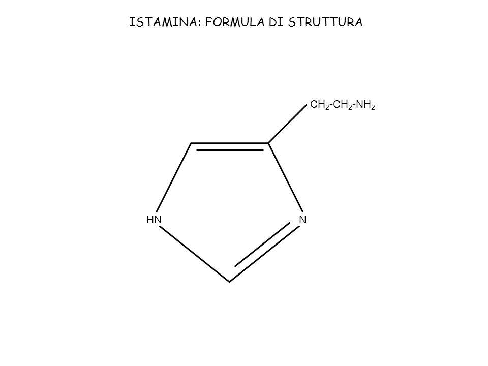 HNN CH 2 -CH 2 -NH 2 ISTAMINA: FORMULA DI STRUTTURA
