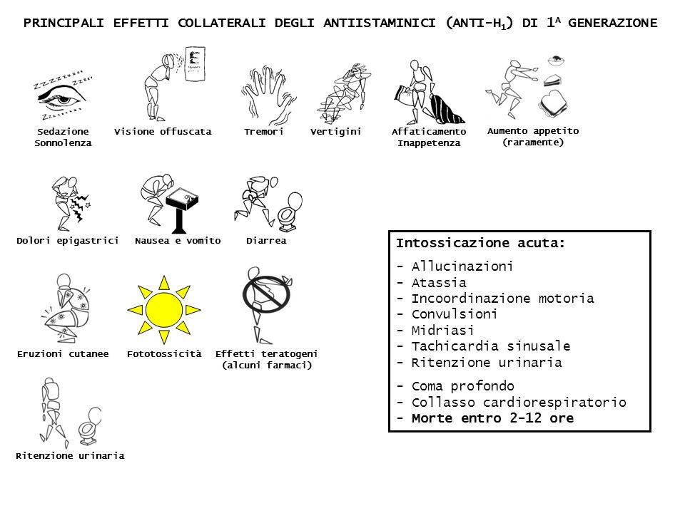 PRINCIPALI EFFETTI COLLATERALI DEGLI ANTIISTAMINICI (ANTI-H 1 ) DI 1 A GENERAZIONE Sedazione Sonnolenza Visione offuscataTremori VertiginiAffaticament