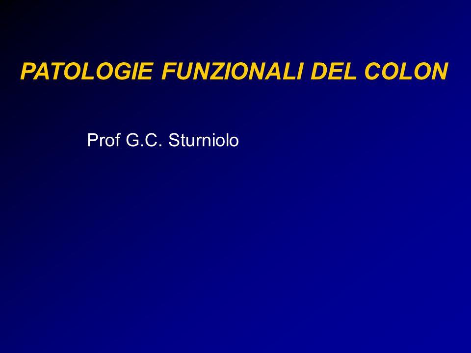 PATOLOGIE FUNZIONALI DEL COLON Prof G.C. Sturniolo