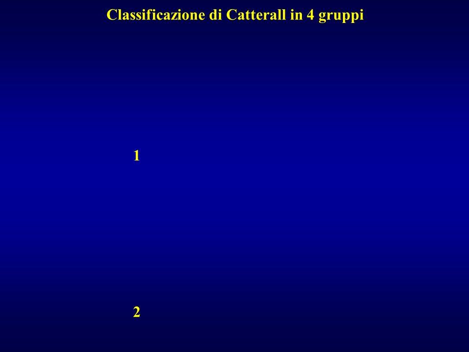 Classificazione di Catterall in 4 gruppi 1 2