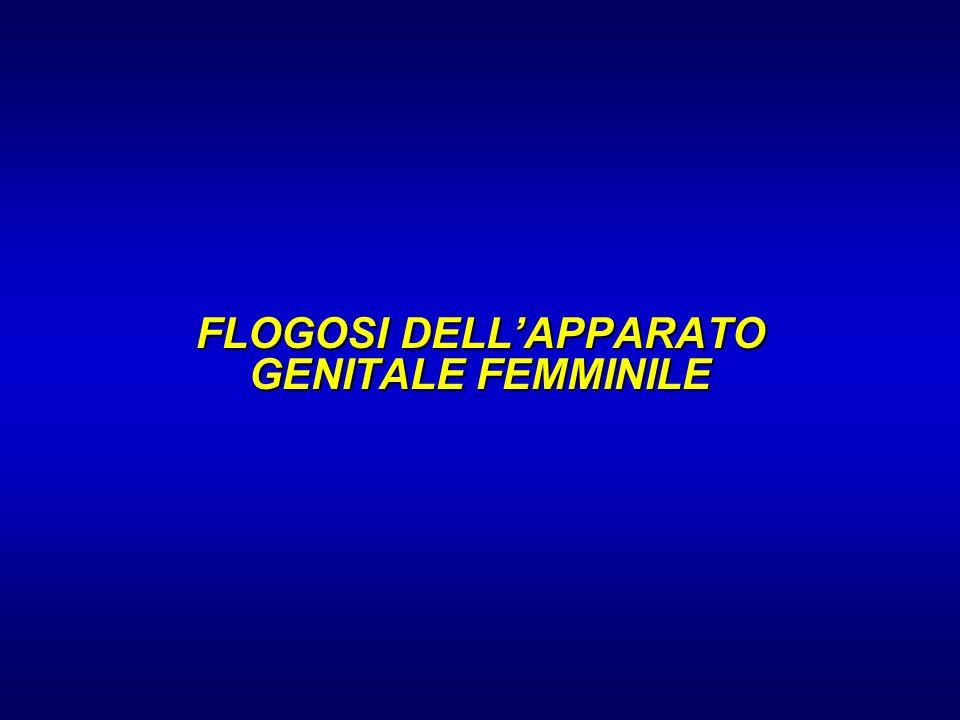 FLOGOSI DELLAPPARATO GENITALE FEMMINILE