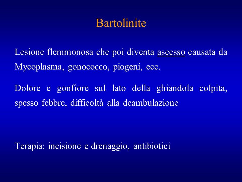Bartolinite Lesione flemmonosa che poi diventa ascesso causata da Mycoplasma, gonococco, piogeni, ecc. Dolore e gonfiore sul lato della ghiandola colp