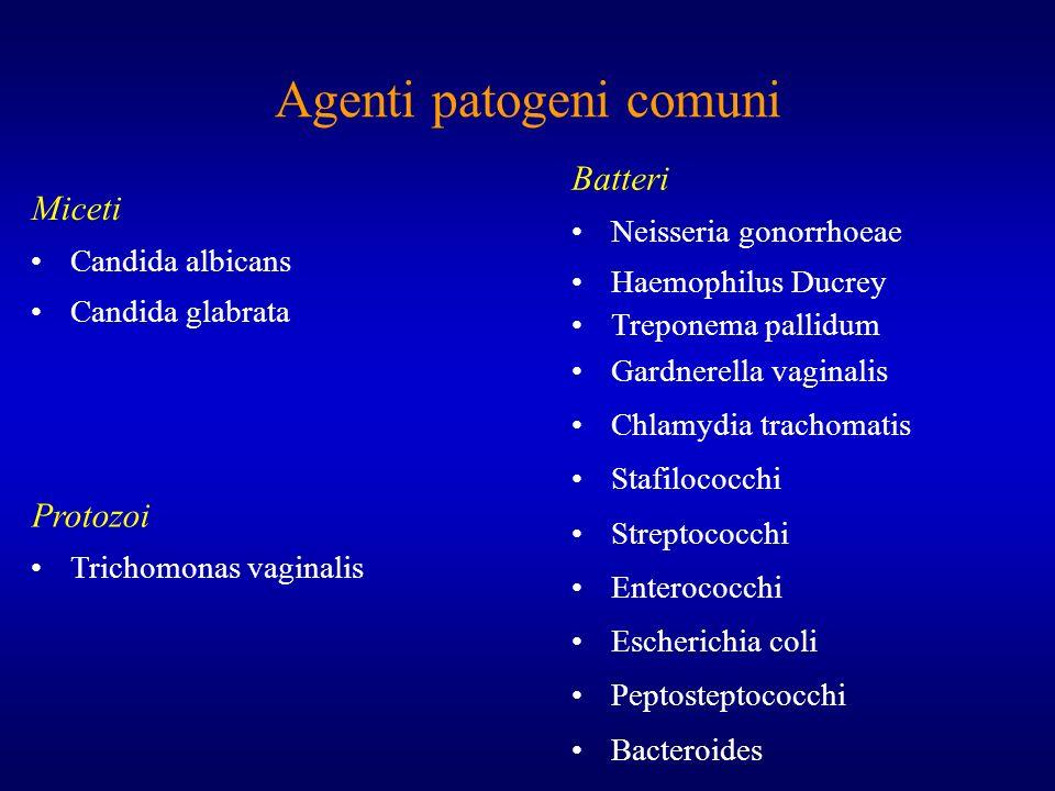Agenti patogeni comuni Miceti Candida albicans Candida glabrata Batteri Neisseria gonorrhoeae Haemophilus Ducrey Treponema pallidum Gardnerella vagina