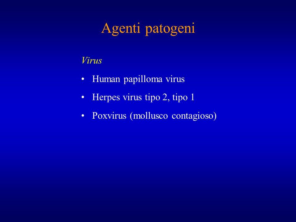 Agenti patogeni Virus Human papilloma virus Herpes virus tipo 2, tipo 1 Poxvirus (mollusco contagioso)