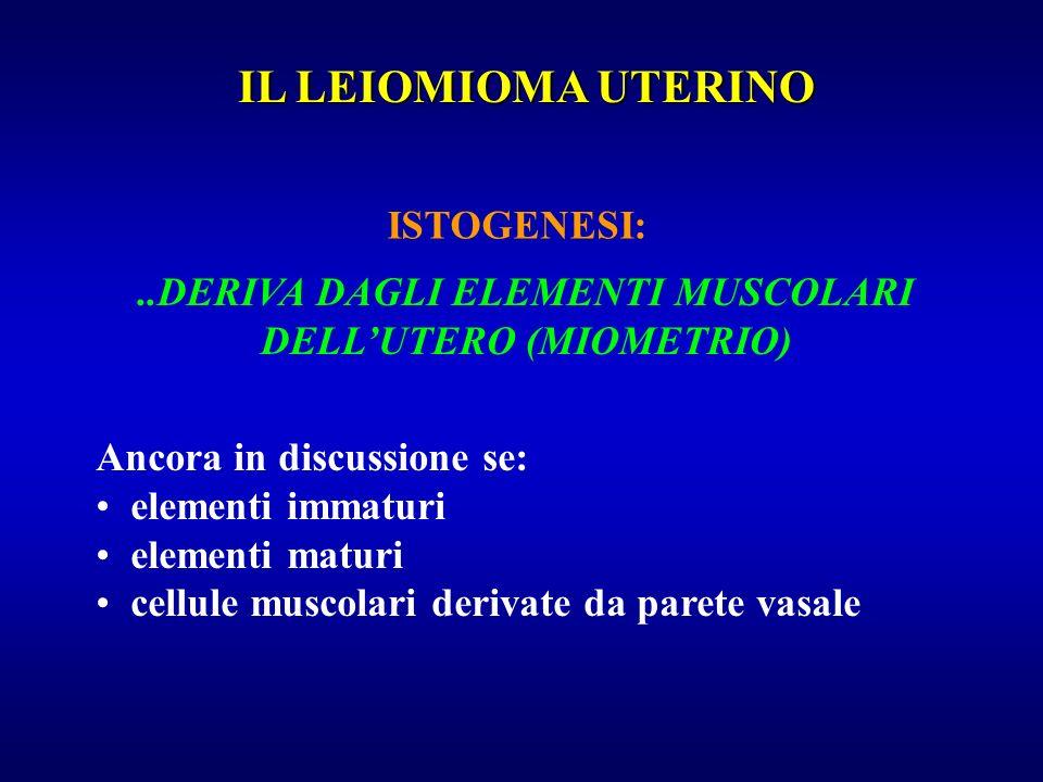 ISTOGENESI:..DERIVA DAGLI ELEMENTI MUSCOLARI DELLUTERO (MIOMETRIO) Ancora in discussione se: elementi immaturi elementi maturi cellule muscolari deriv