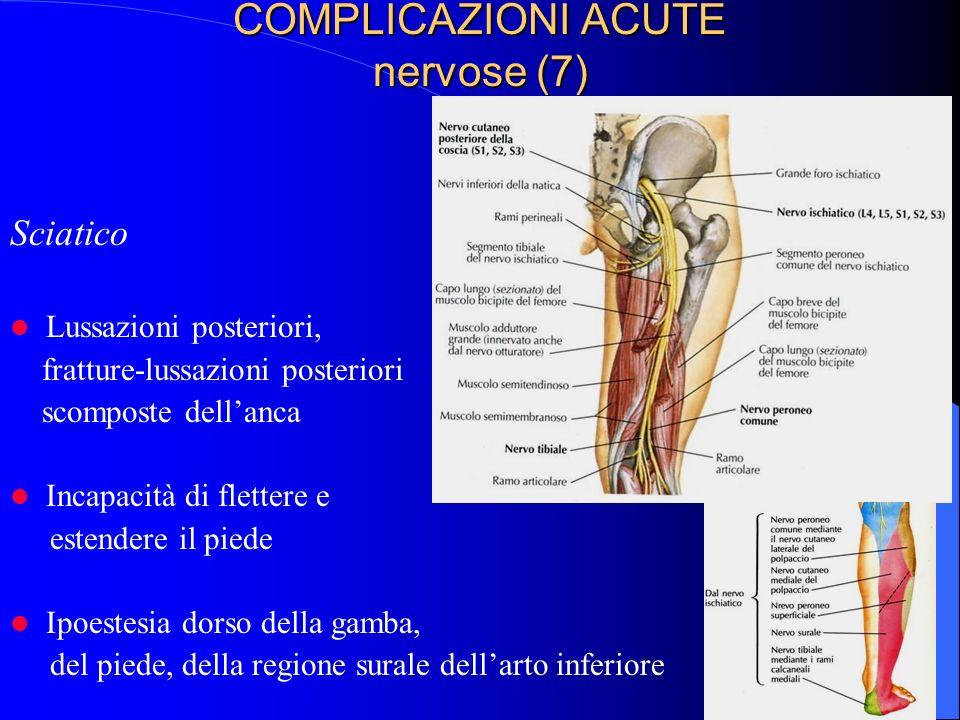 COMPLICAZIONI ACUTE nervose (7) Sciatico Lussazioni posteriori, fratture-lussazioni posteriori scomposte dellanca Incapacità di flettere e estendere il piede Ipoestesia dorso della gamba, del piede, della regione surale dellarto inferiore