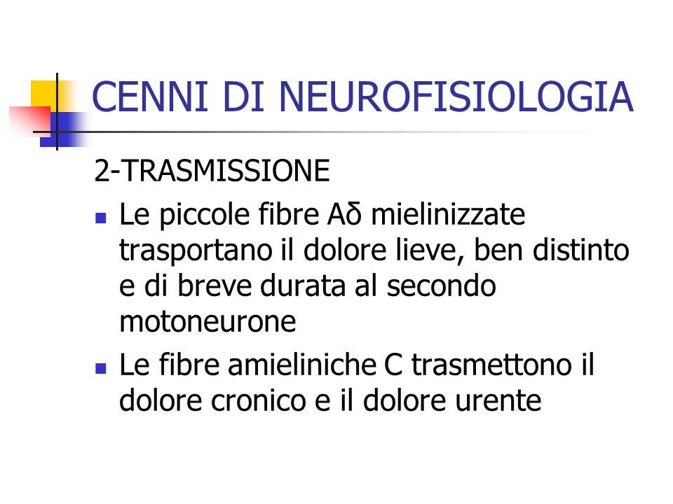2-TRASMISSIONE Le piccole fibre Aδ mielinizzate trasportano il dolore lieve, ben distinto e di breve durata al secondo motoneurone Le fibre amieliniche C trasmettono il dolore cronico e il dolore urente CENNI DI NEUROFISIOLOGIA