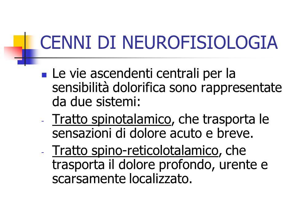 Le vie ascendenti centrali per la sensibilità dolorifica sono rappresentate da due sistemi: - Tratto spinotalamico, che trasporta le sensazioni di dolore acuto e breve.