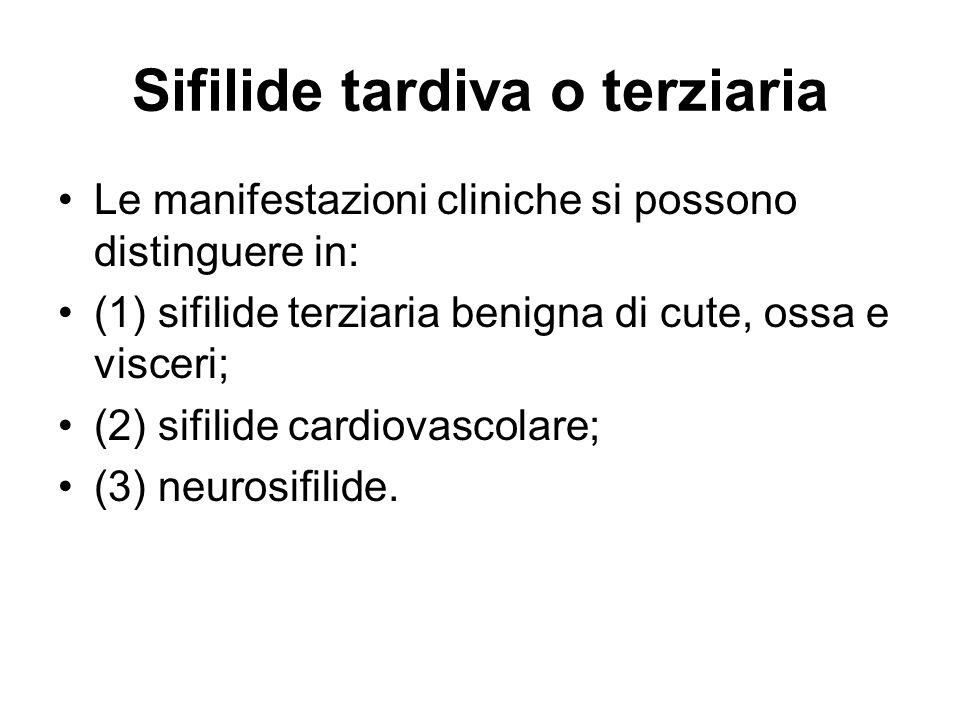 Sifilide tardiva o terziaria Le manifestazioni cliniche si possono distinguere in: (1) sifilide terziaria benigna di cute, ossa e visceri; (2) sifilide cardiovascolare; (3) neurosifilide.