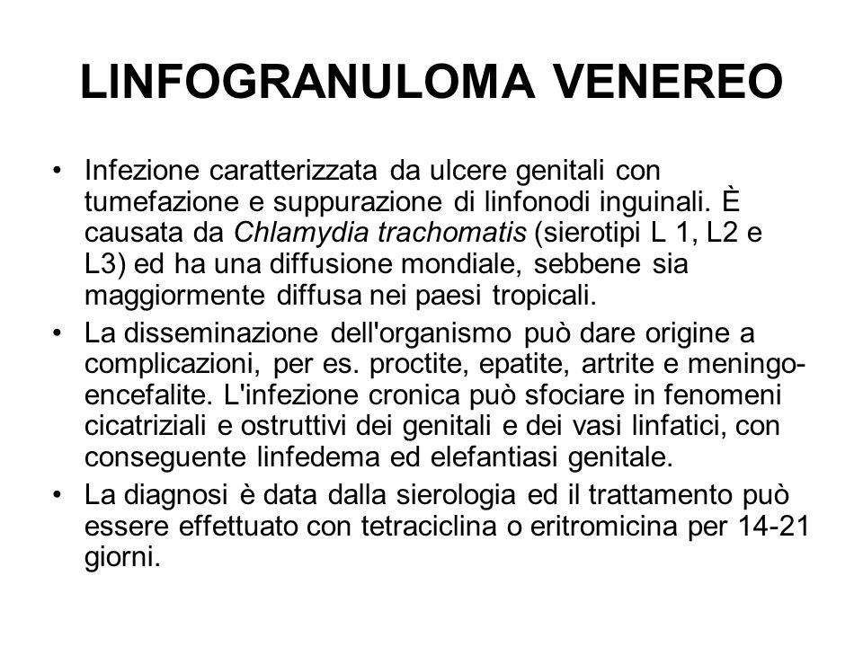 LlNFOGRANULOMA VENEREO Infezione caratterizzata da ulcere genitali con tumefazione e suppurazione di linfonodi inguinali.