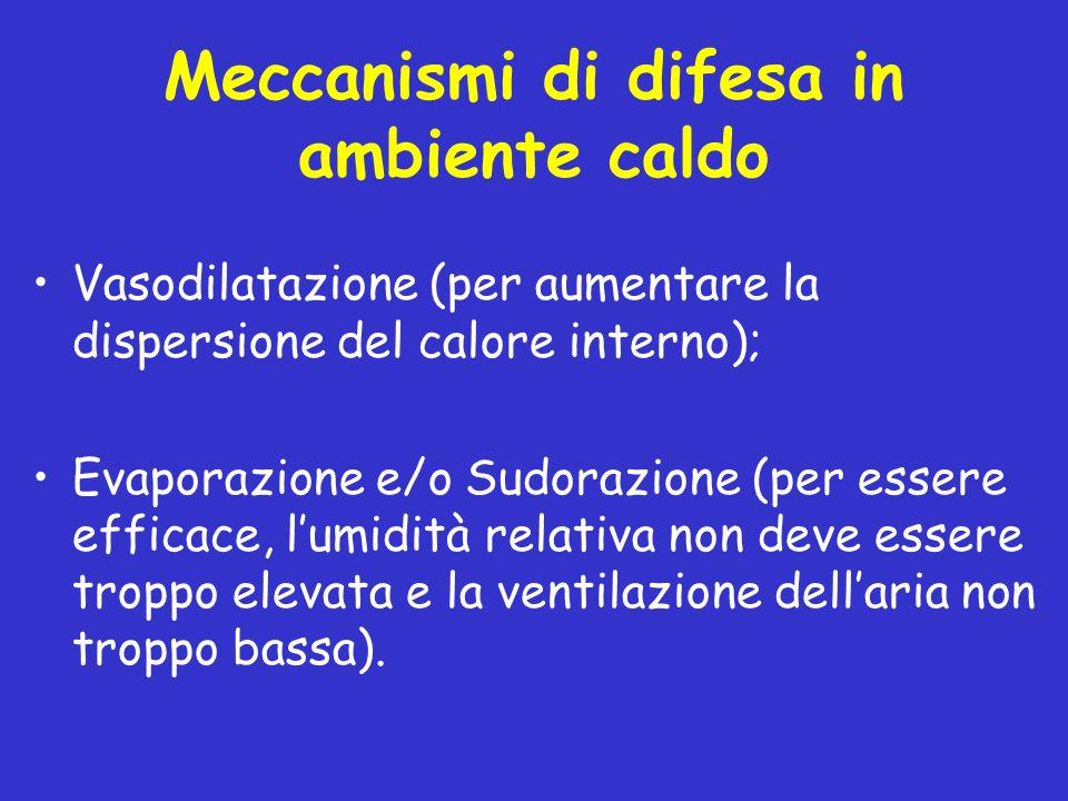Meccanismi di difesa in ambiente caldo Vasodilatazione (per aumentare la dispersione del calore interno); Evaporazione e/o Sudorazione (per essere eff