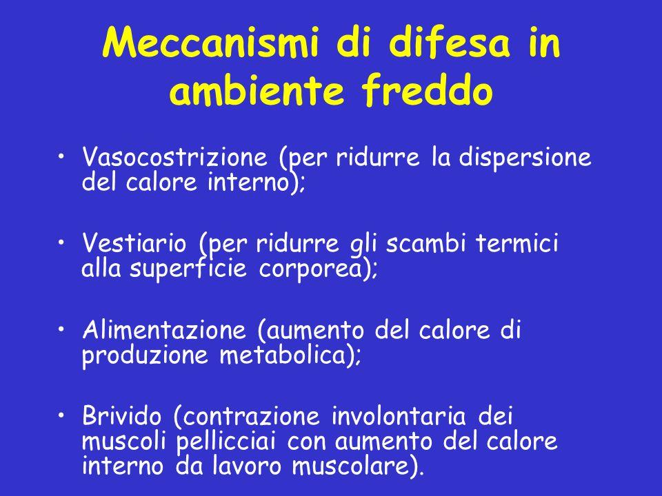 Meccanismi di difesa in ambiente freddo Vasocostrizione (per ridurre la dispersione del calore interno); Vestiario (per ridurre gli scambi termici all