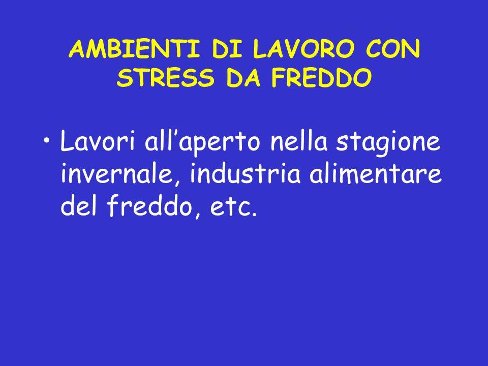 AMBIENTI DI LAVORO CON STRESS DA FREDDO Lavori allaperto nella stagione invernale, industria alimentare del freddo, etc.