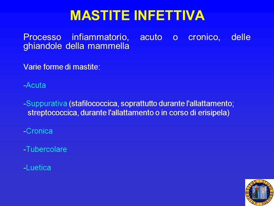 MASTITE INFETTIVA Processo infiammatorio, acuto o cronico, delle ghiandole della mammella Varie forme di mastite: -Acuta -Suppurativa (stafilococcica,