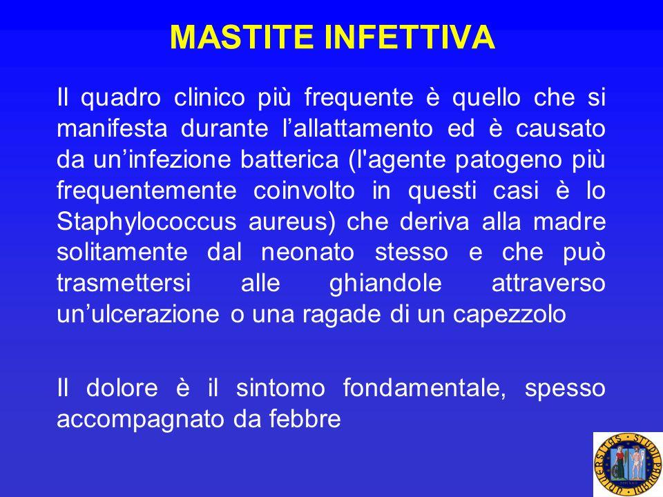 MASTITE INFETTIVA Il quadro clinico più frequente è quello che si manifesta durante lallattamento ed è causato da uninfezione batterica (l'agente pato