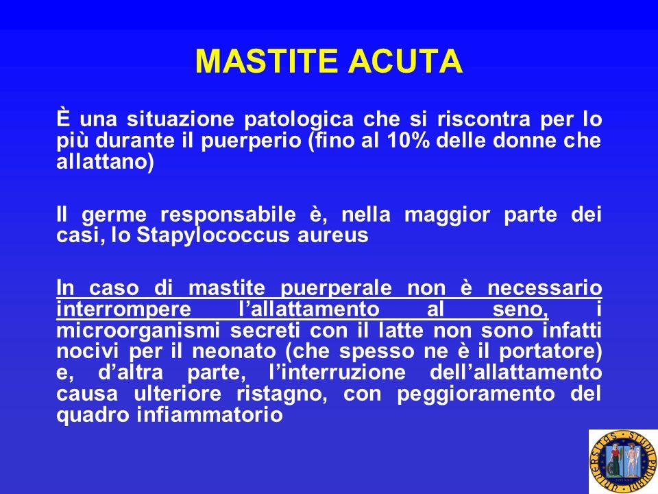 MASTITE ACUTA È una situazione patologica che si riscontra per lo più durante il puerperio (fino al 10% delle donne che allattano) Il germe responsabi