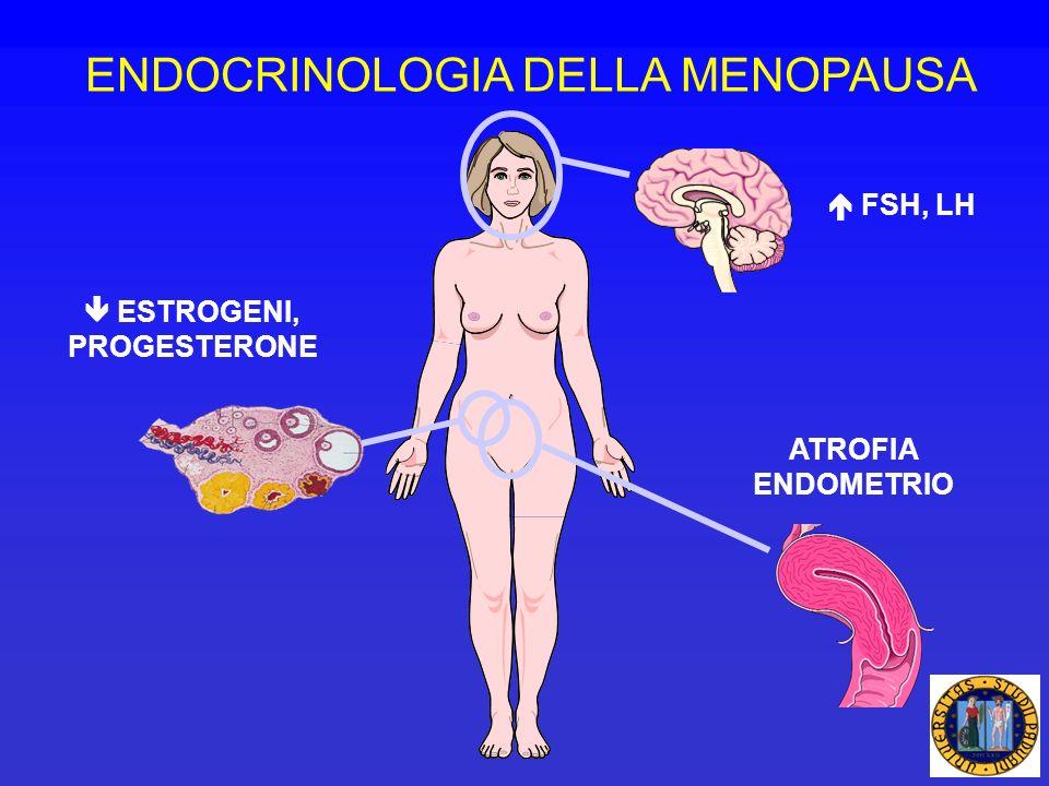 ATROFIA ENDOMETRIO ESTROGENI, PROGESTERONE FSH, LH ENDOCRINOLOGIA DELLA MENOPAUSA