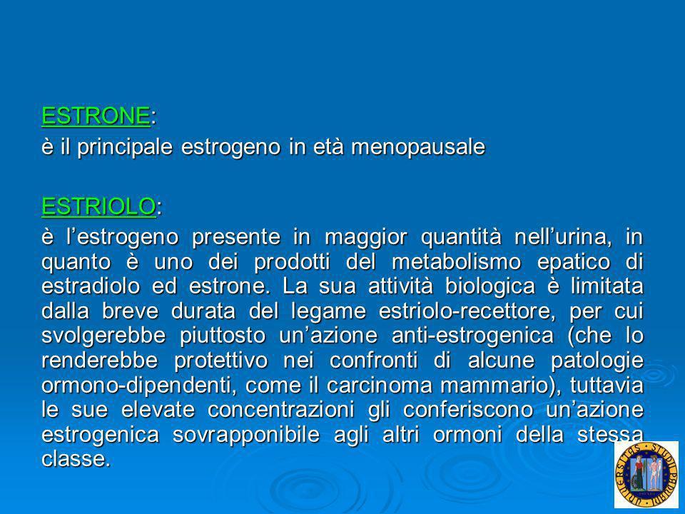 ESTRONE: è il principale estrogeno in età menopausale ESTRIOLO: è lestrogeno presente in maggior quantità nellurina, in quanto è uno dei prodotti del
