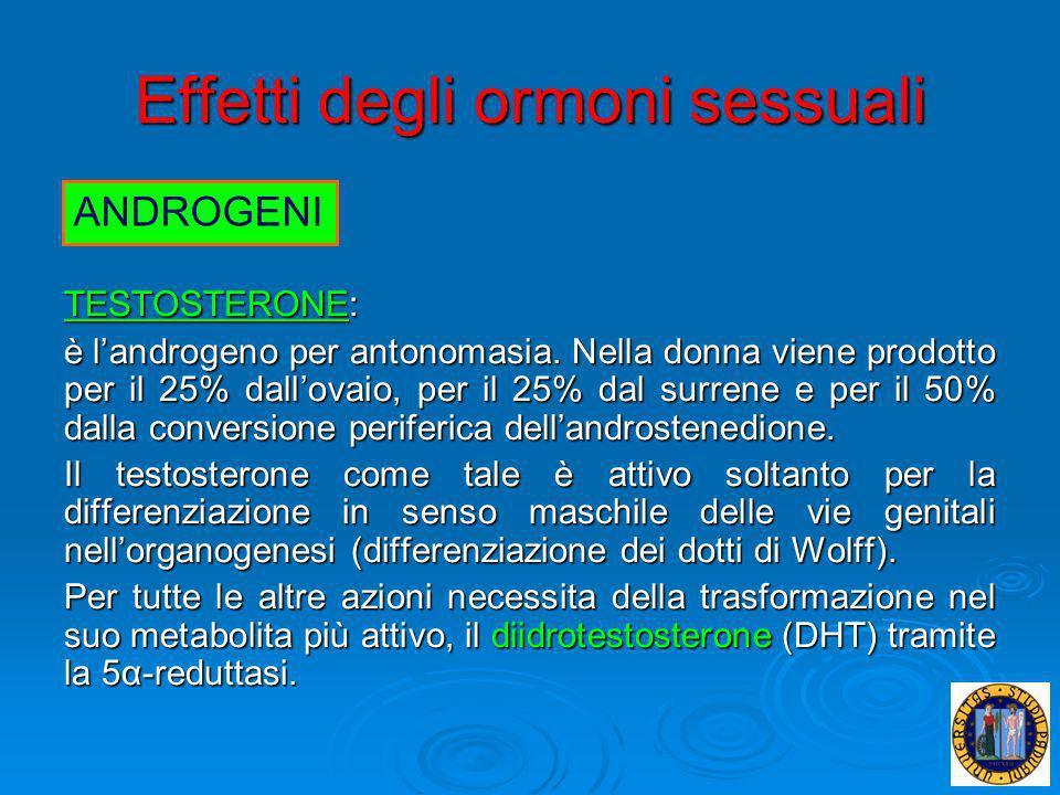 Effetti degli ormoni sessuali TESTOSTERONE: è landrogeno per antonomasia. Nella donna viene prodotto per il 25% dallovaio, per il 25% dal surrene e pe