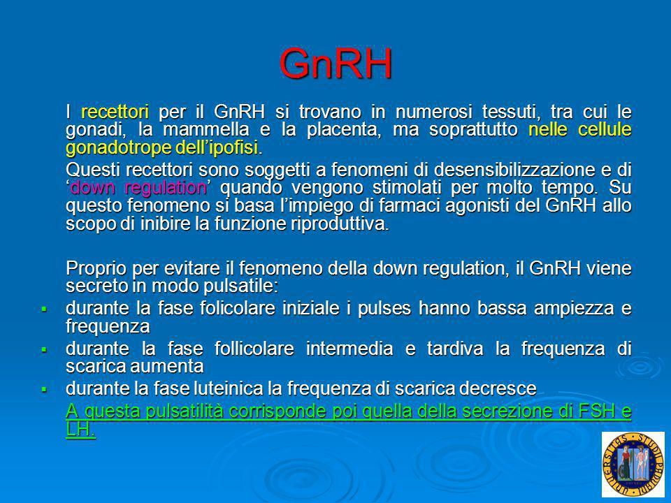 GnRH I recettori per il GnRH si trovano in numerosi tessuti, tra cui le gonadi, la mammella e la placenta, ma soprattutto nelle cellule gonadotrope de