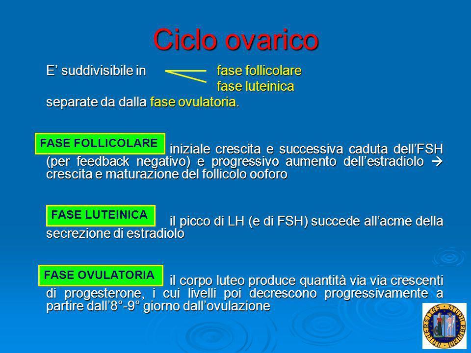 Ciclo ovarico E suddivisibile infase follicolare fase luteinica separate da dalla fase ovulatoria. iniziale crescita e successiva caduta dellFSH (per