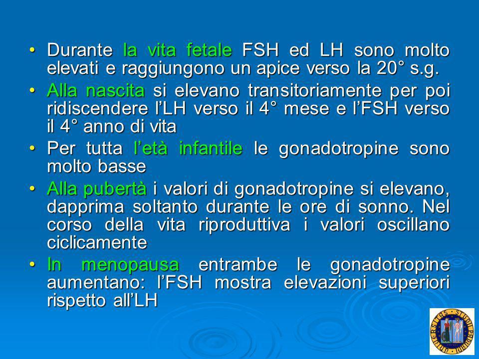 Durante la vita fetale FSH ed LH sono molto elevati e raggiungono un apice verso la 20° s.g.Durante la vita fetale FSH ed LH sono molto elevati e ragg