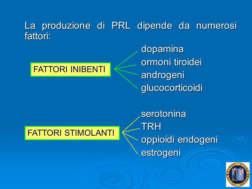 Anche la MUCOSA ENDOCERVICALE presenta variazioni cicliche in risposta alle modificazioni ormonali: allinizio della fase estrogenica le ghiandole cervicali sono modicamente ramificate con un rivestimento epiteliale basso allinizio della fase estrogenica le ghiandole cervicali sono modicamente ramificate con un rivestimento epiteliale basso più avanti, nella stessa fase, si notano numerose ramificazioni ghiandolari, l epitelio di rivestimento si fa molto alto, con cellule disposte a palizzata; questo epitelio è ricco di secrezioni di tipo mucoso che si riversano nel lume ghiandolare più avanti, nella stessa fase, si notano numerose ramificazioni ghiandolari, l epitelio di rivestimento si fa molto alto, con cellule disposte a palizzata; questo epitelio è ricco di secrezioni di tipo mucoso che si riversano nel lume ghiandolare in fase progestinica il lume ghiandolare è più ristretto, si riducono le ramificazioni delle ghiandole e l epitelio mostra una scarsissima secrezione mucosa in fase progestinica il lume ghiandolare è più ristretto, si riducono le ramificazioni delle ghiandole e l epitelio mostra una scarsissima secrezione mucosa