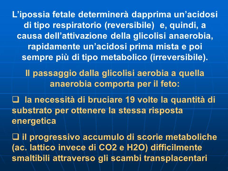 Lipossia fetale determinerà dapprima unacidosi di tipo respiratorio (reversibile) e, quindi, a causa dellattivazione della glicolisi anaerobia, rapidamente unacidosi prima mista e poi sempre più di tipo metabolico (irreversibile).