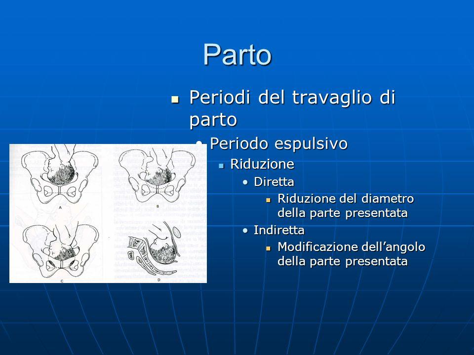 Parto Periodi del travaglio di parto Periodi del travaglio di parto Periodo espulsivo Riduzione Diretta Riduzione del diametro della parte presentata Indiretta Modificazione dellangolo della parte presentata