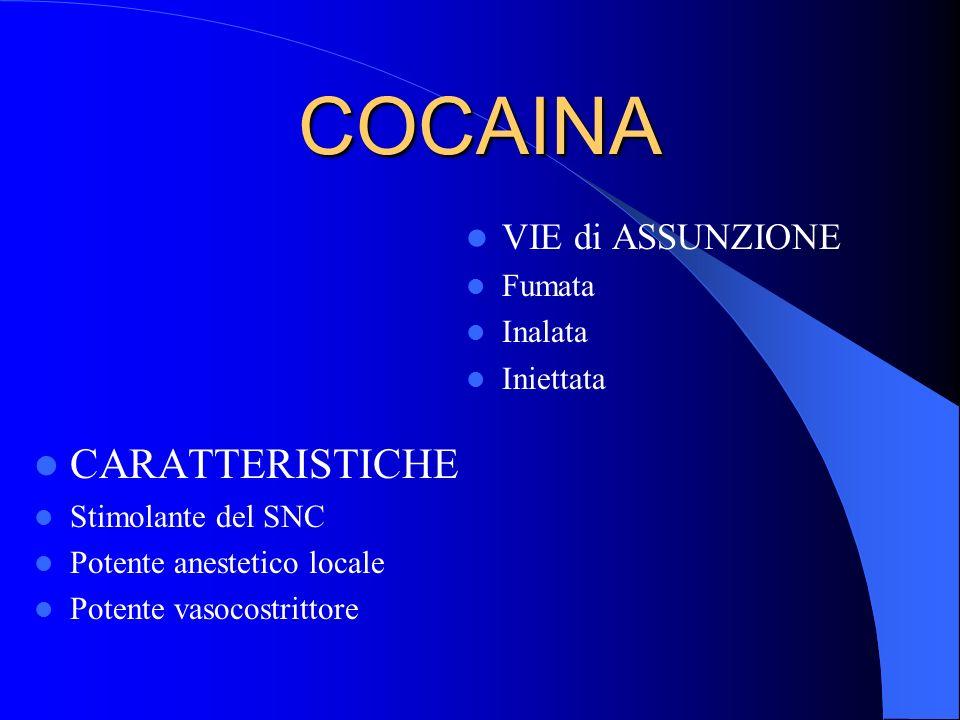COCAINA CARATTERISTICHE Stimolante del SNC Potente anestetico locale Potente vasocostrittore VIE di ASSUNZIONE Fumata Inalata Iniettata