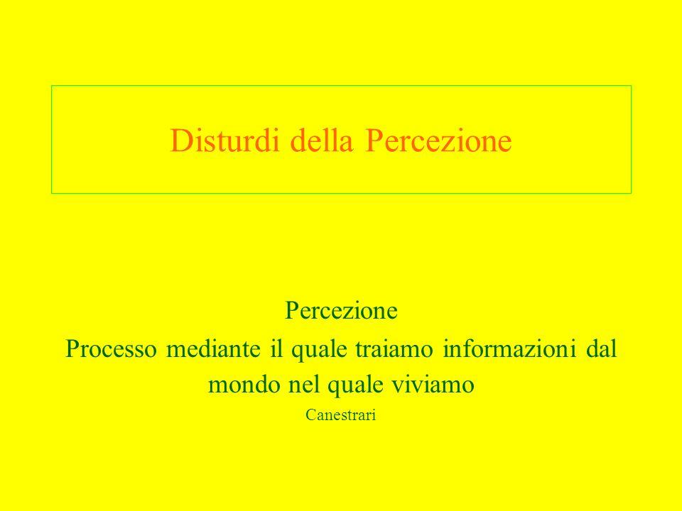Disturdi della Percezione Percezione Processo mediante il quale traiamo informazioni dal mondo nel quale viviamo Canestrari