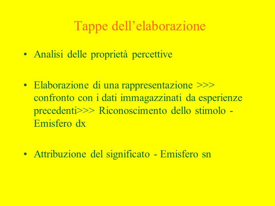 Connotazioni Modalità di insorgenza –allucinazioni funzionali –allucinazioni riflesse o sinestesie Relazione con lo stato affettivo –congrue allumore –incongrue allumore