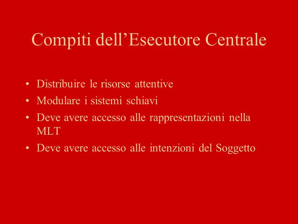 Esecutore Centrale Ciclo Fonologico Taccuino Visuo-spaziale Working Memory