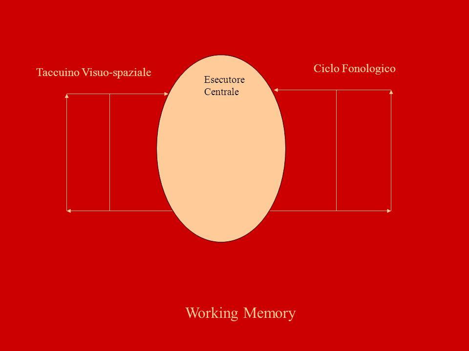 Amnesia Disturbo globale della memoria.