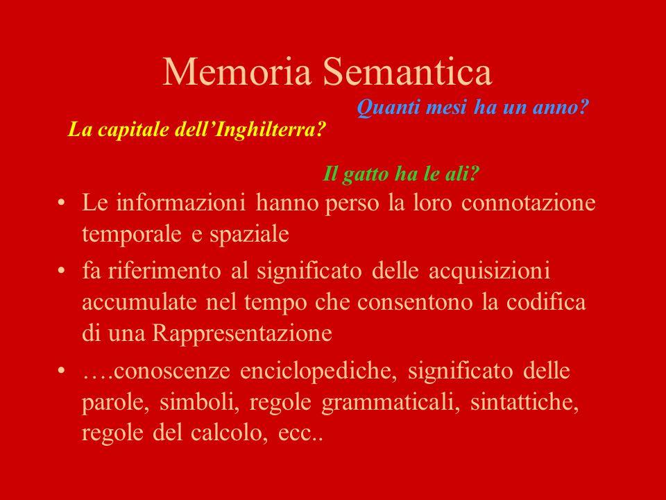 Memoria Episodica Mantengono le loro relazioni temporali e spaziali quando dove esperienze passate, episodi, eventi, fatti –Personali - Memoria Autobiografica –Extrapersonali Aree del lobo Temporale bilaterali