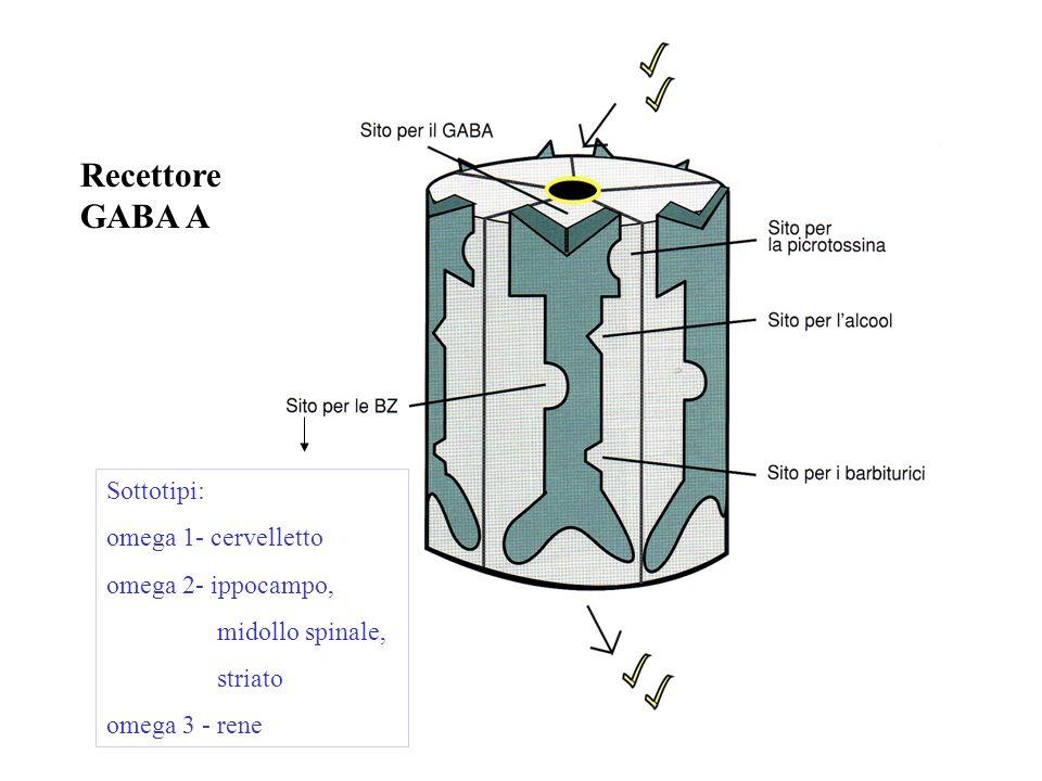 Recettore GABA A Sottotipi: omega 1- cervelletto omega 2- ippocampo, midollo spinale, striato omega 3 - rene