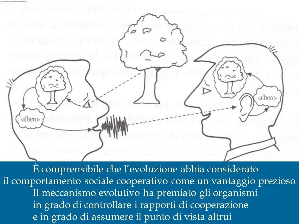 È comprensibile che levoluzione abbia considerato il comportamento sociale cooperativo come un vantaggio prezioso Il meccanismo evolutivo ha premiato