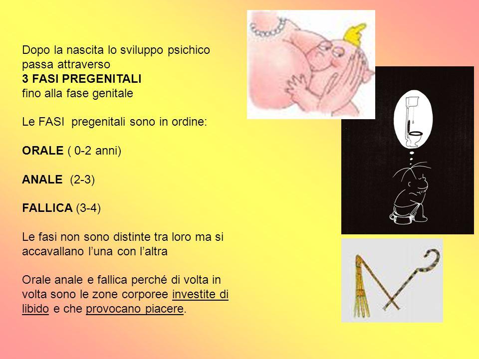 Dopo la nascita lo sviluppo psichico passa attraverso 3 FASI PREGENITALI fino alla fase genitale Le FASI pregenitali sono in ordine: ORALE ( 0-2 anni)