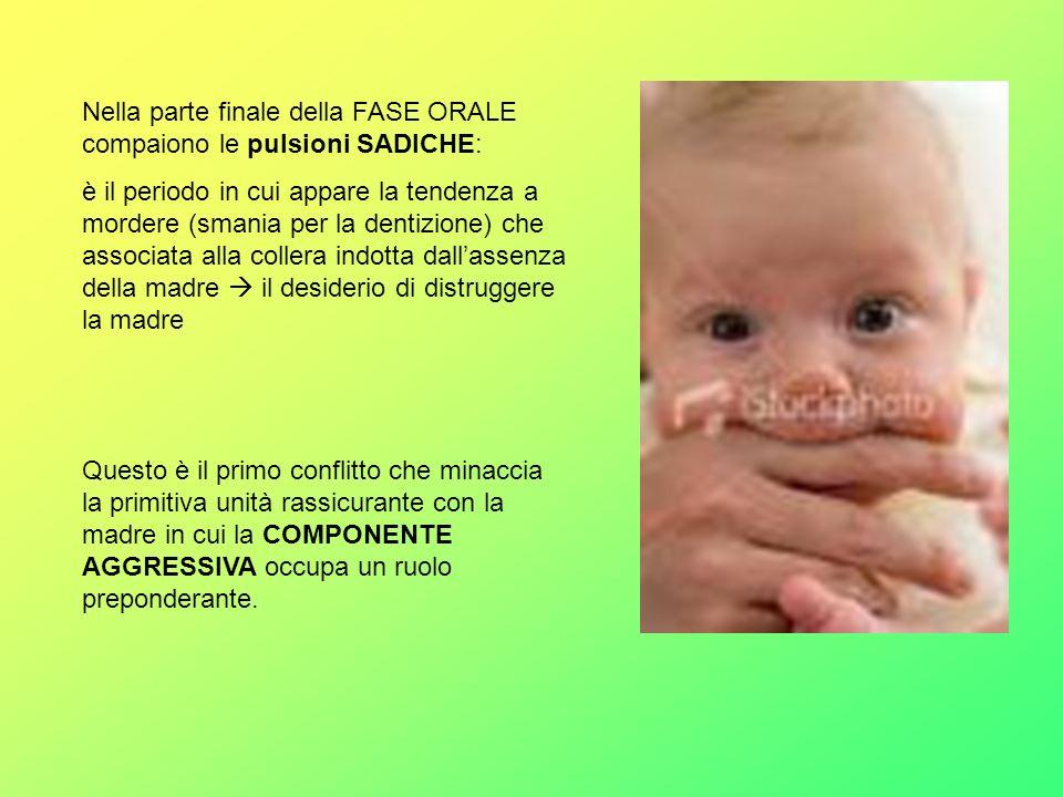 Nella parte finale della FASE ORALE compaiono le pulsioni SADICHE: è il periodo in cui appare la tendenza a mordere (smania per la dentizione) che ass