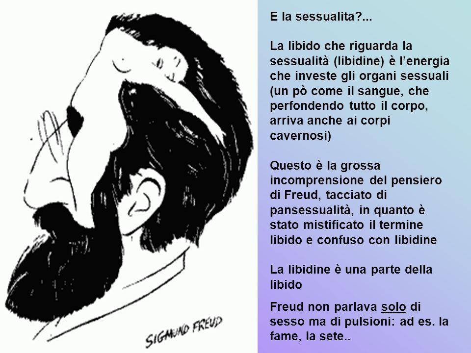 E la sessualita?... La libido che riguarda la sessualità (libidine) è lenergia che investe gli organi sessuali (un pò come il sangue, che perfondendo