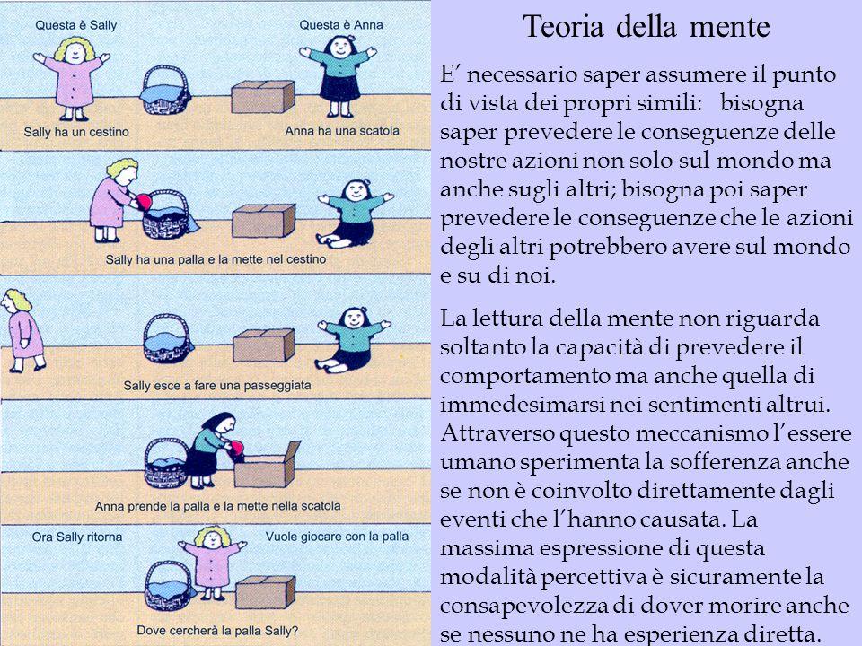 Teoria della mente E necessario saper assumere il punto di vista dei propri simili: bisogna saper prevedere le conseguenze delle nostre azioni non sol